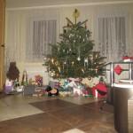 weihnachten2013 479